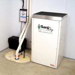 An ENERGY STAR® Rated basement dehumidifier installed in a home in Wilmington