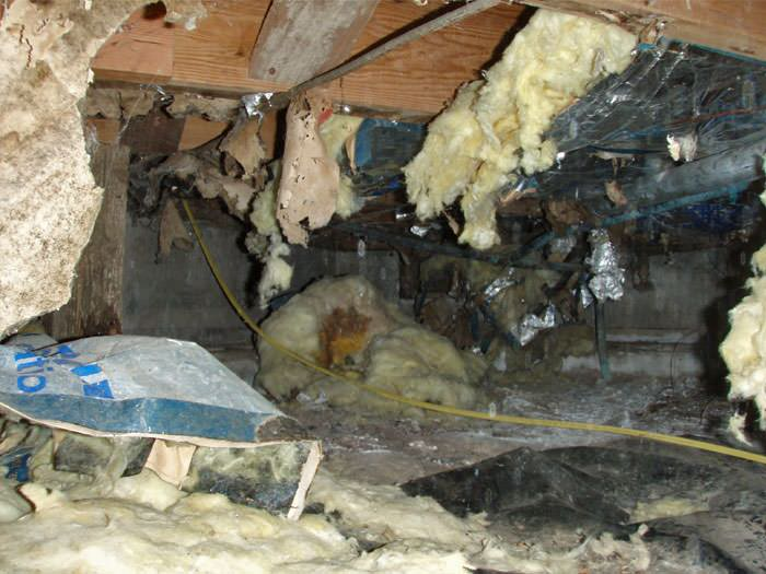 Crawl Space Cleaning In Wilmington Fayetteville