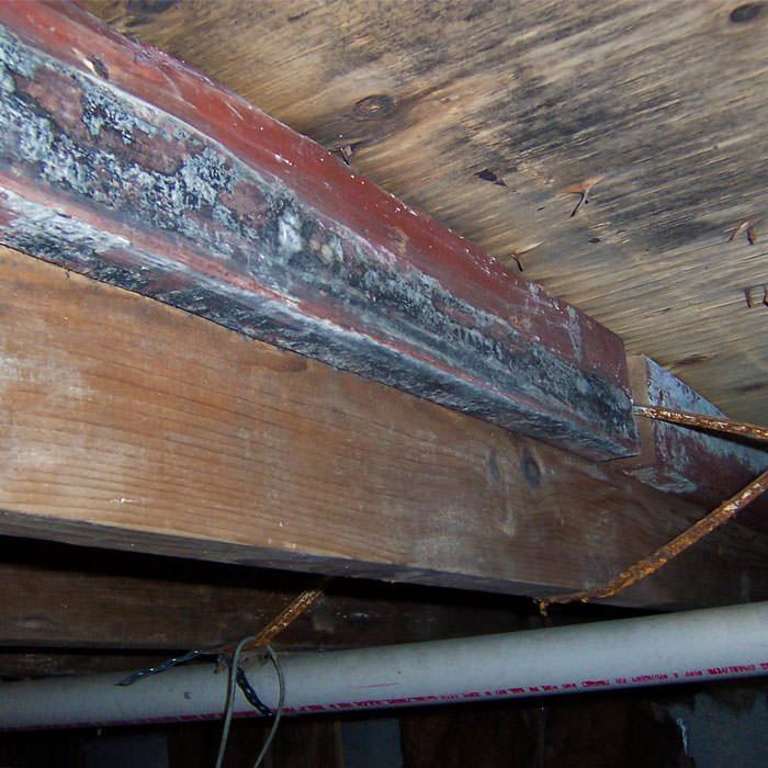 Repair Wood Damage In North Carolina Repair And