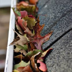 Clogged gutters filled with fall leaves  in Hubert